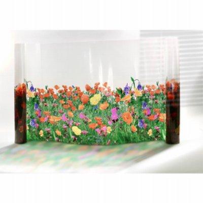 Film fleurs Coquelicots