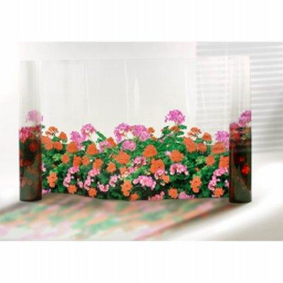 Film fleurs Géraniums